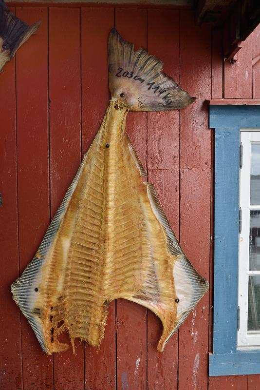 Drying fish on the wall © Jarle Wæhler/Statens vegvesen