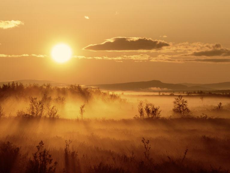 Finnmarksvidda er et enormt, bølgende landskap © Turgleder
