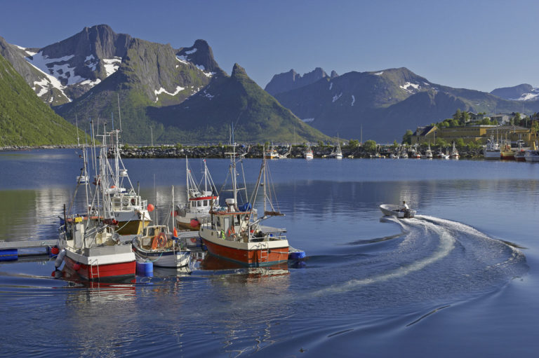 Fra havna i Mefjordvær ser du inn over senjafjellene © Bård Løken