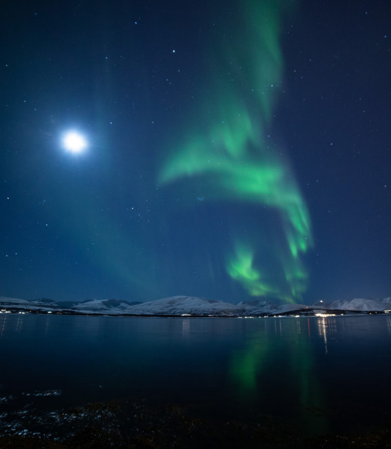 Moonlit views out towards the island of Kvaløya © William Copeland