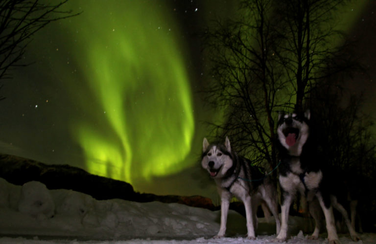 The Northern Lights might show up during the night © Trond Anton Andersen