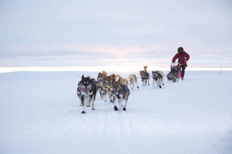 Running at the trail © Joern Losvar