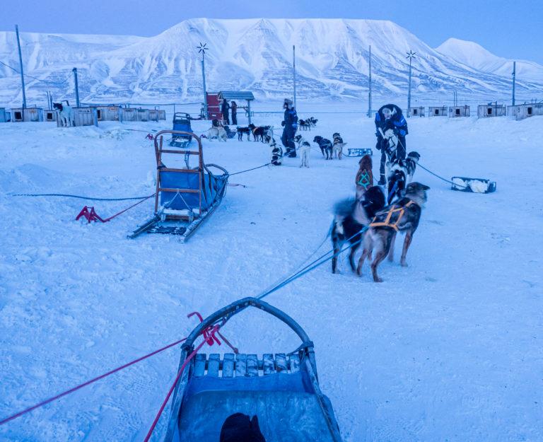 Masse kontakt med hundene inngår. De elsker å være ute © Ann J Nordvålen