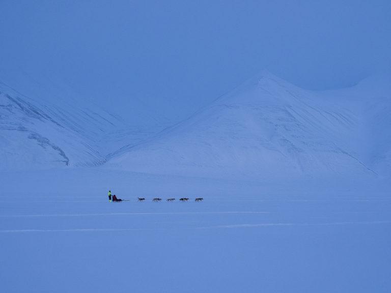 Med en gang du forlater Longyearbyen, er du ute i urørt natur © Jan Nordvålen