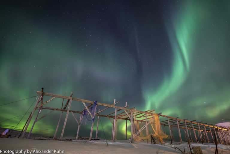 The Northern Lights dance over the drying racks for fish at Støtt island © Alexander Kühn