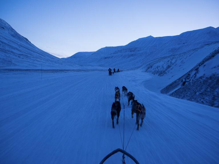 På hundetur i blåtimen © Jan Nordvålen