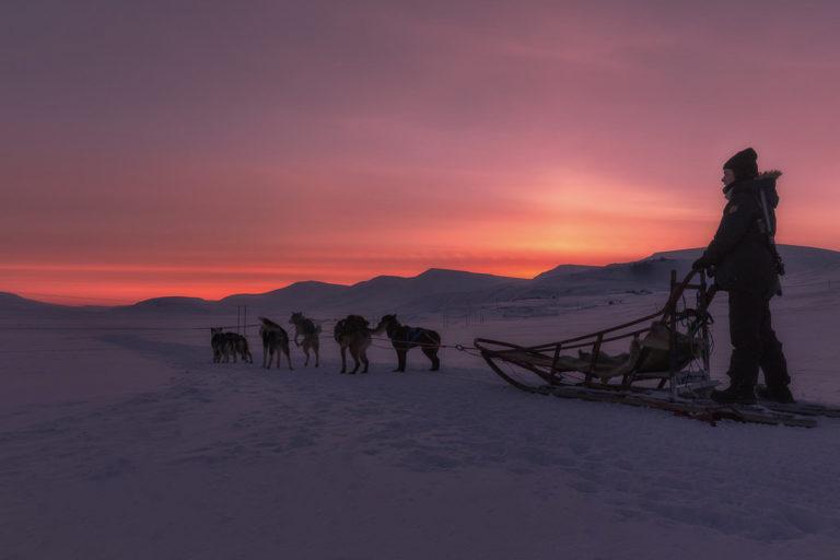 På hundeslede ut i villmarka © Terje Nergard Photography