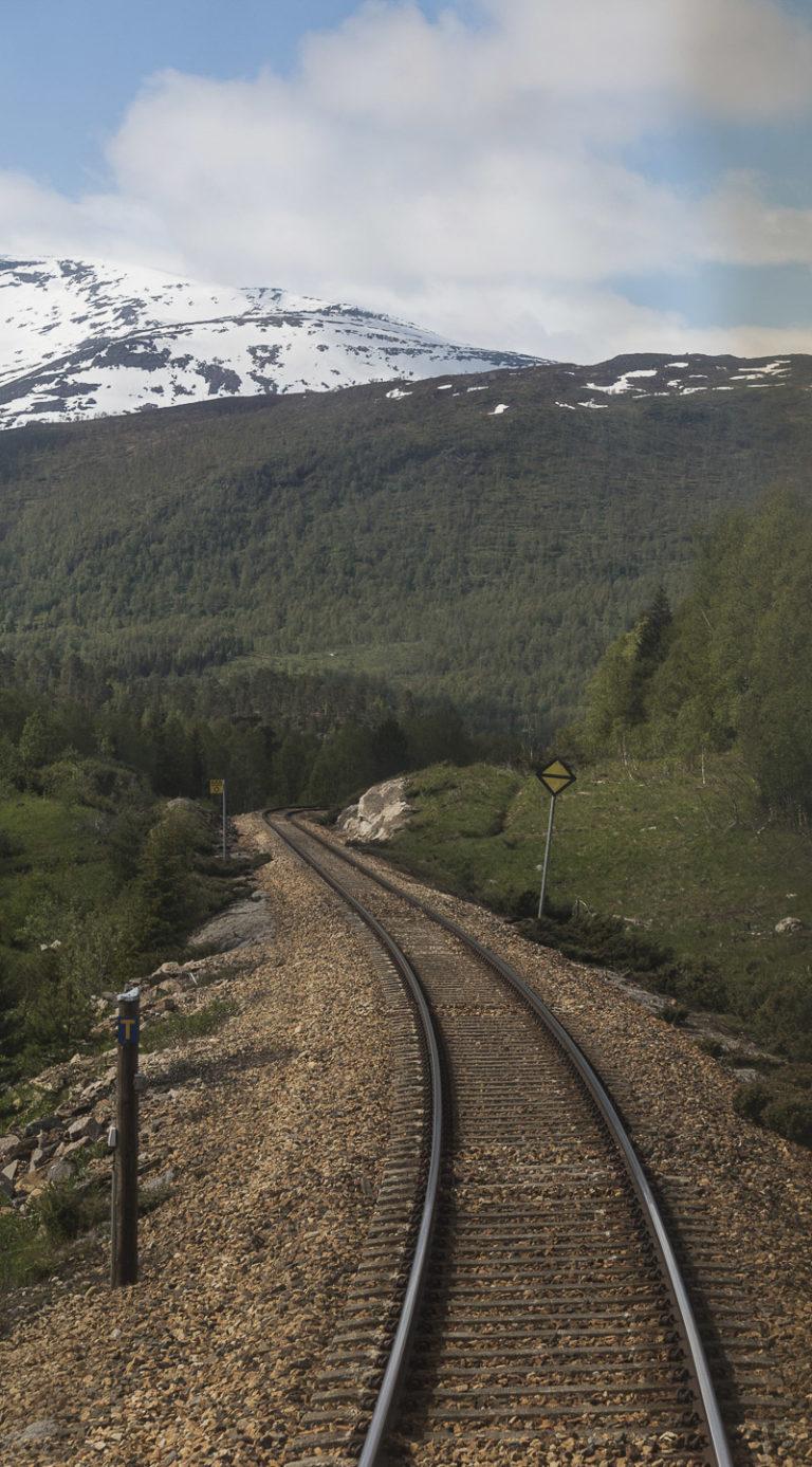 Skinnegang mot nord © Kathrine Sørgård