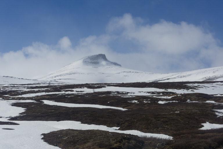 På vei over Saltfjellet en forsommer © Kathrine Sørgård
