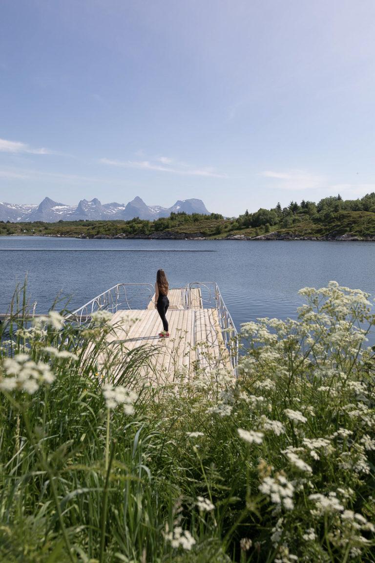 Sommerlig frodighet på Herøy © Katrine Sørgård
