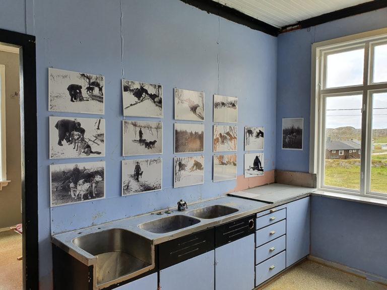 Exhibit about dogs at war in the old kitchen © Asbjørn Nilsen/Vardøhus Museumsforening