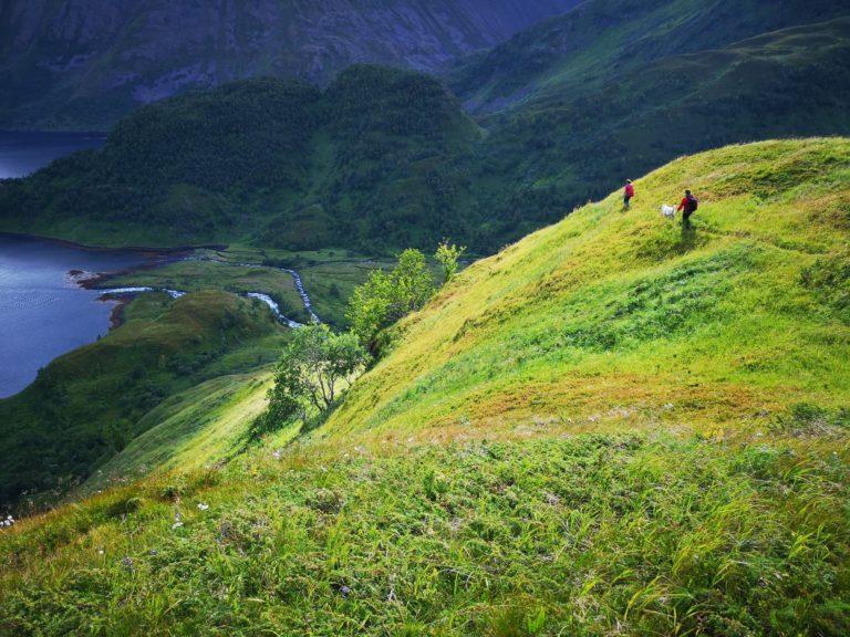 Foto: Seiland Nasjonalpark