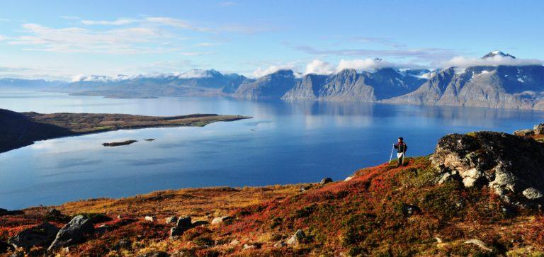 Lyngenfjord. Foto: Georg Sichelschmidt