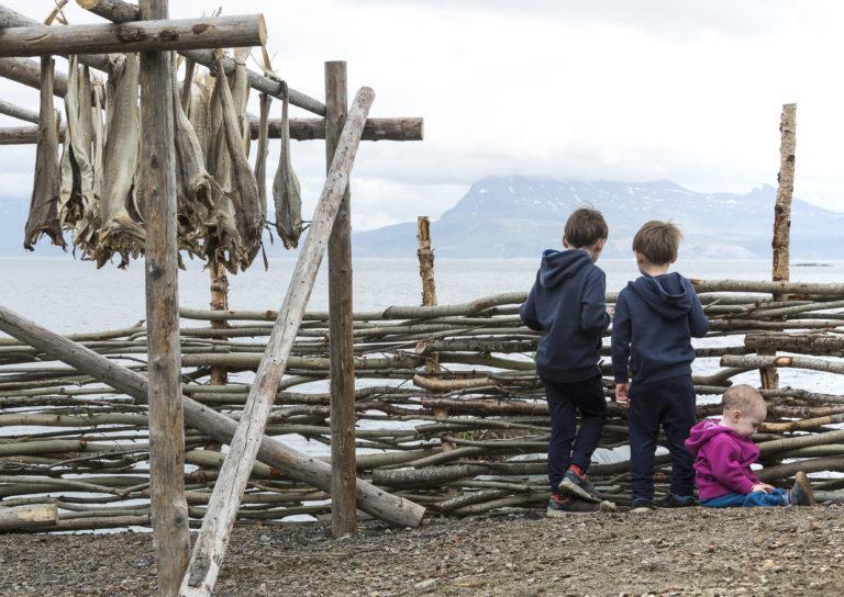 Foto: Harriet M. Olsen / Sør-Troms Museum