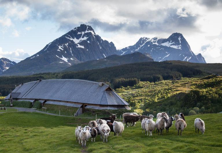 Lofotr Vikingmuseum. Foto: Kjell Ove Storvik