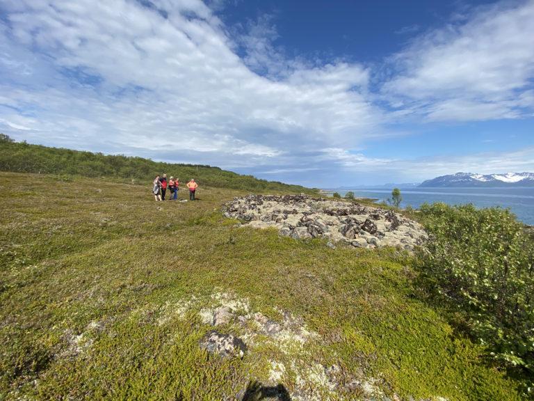 Gravrøys på Bjarkøy Foto: Jan-Erik Kristoffersen