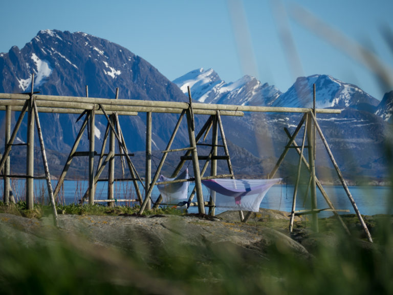 Foto: K Gullesen  / Seil Helgeland