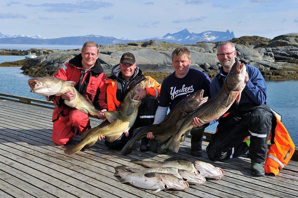 Bli med på kveitefiske på Offersøy Feriesenter.