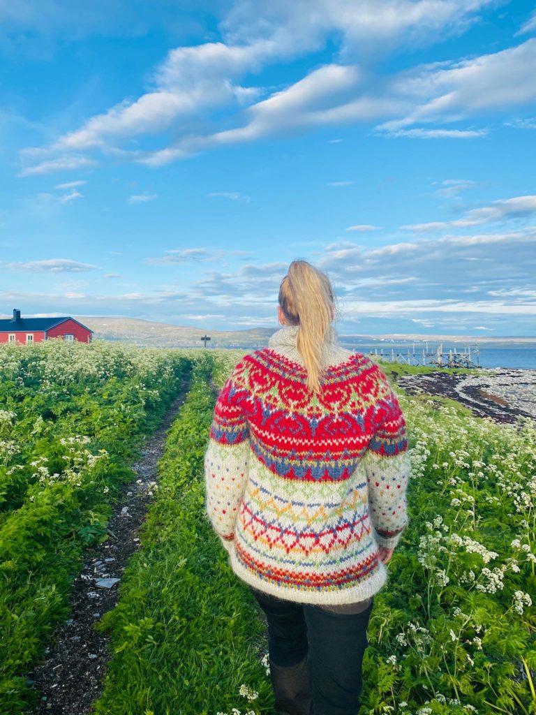 Sommerlandskap på nesten 71 grader nord på Tamsøya. Legg merke til ullgenseren © Runa Elde Skarset