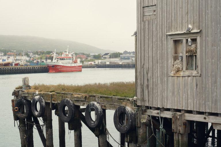 Båtsfjord fog © Emile Holba / www.visitvaranger.no