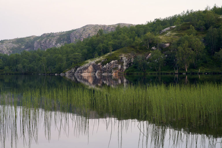Birch forests and quiet lakes in the coastal areas near Kirkenes © Emile Holba / www.visitvaranger.no