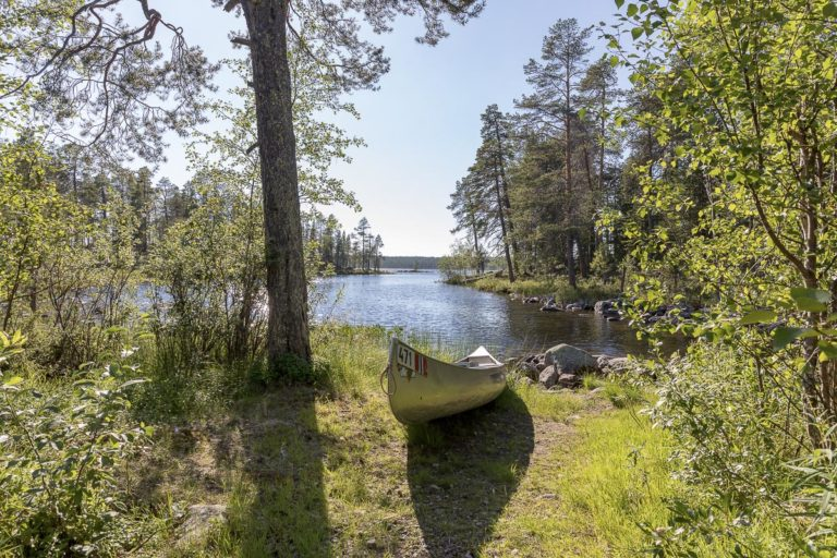 Quiet spot in the deep forests near the Russian border © Fotoknoff / www.visitvaranger.no