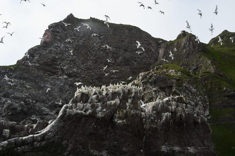 Syltefjordstauran strekker seg over et par kilometer langs fjorden © Emile Holba/www.visitvaranger.no