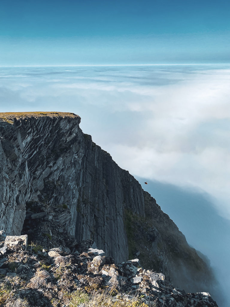 View from the top towards the ocean. This time around, the fog was dense © Katelin Pell